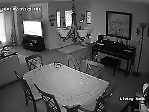 brother in law caught on home security camera